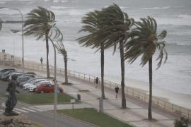 Las rachas de viento han superado los 100 km/h este lunes en Mallorca