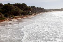 El temporal de viento en Ibiza, en imágenes (Fotos: Daniel Espinosa).