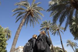 El Ajuntament ha prohibido el paso por el Passeig Sagrera