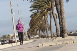 Mallorca volverá a estar en alerta por viento este viernes