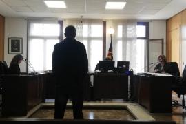 Acepta seis meses de cárcel por matar a golpes al gato de su pareja en Llucmajor