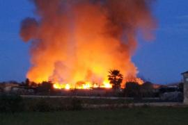 Declarado un incendio en s'Albufera