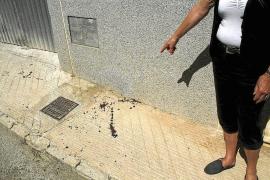 Prisión para el joven que apuñaló al novio de su ex pareja en Vilafranca: «Fue un arrebato»
