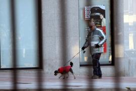 ¿Qué está permitido a la hora de pasear mascotas?