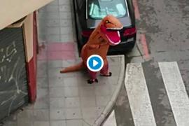 Un dinosaurio en Murcia trata de saltarse la cuarentena