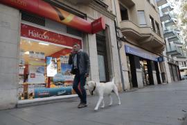 La fusión entre Barceló y Globalia podría aprobarse en un mes