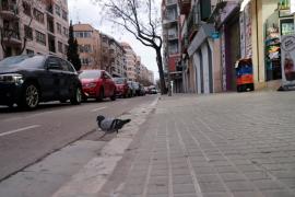 «Es necesario que una persona autista pueda salir a la calle»