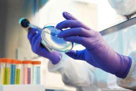 Dos físicos mallorquines calibran la mortalidad de la COVID-19