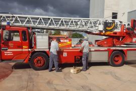 Cinco bomberos de Palma, infectados por coronavirus