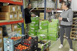 Sóller incrementa la exportación de naranjas a Alemania