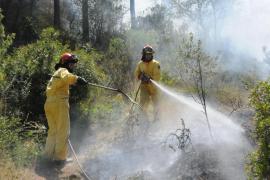 Controlado un incendio en un pinar del Port d'Andratx