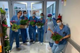 Flores como muestra de agradecimiento a los sanitarios de Son Espases