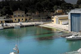 Aguas del puerto de Palma