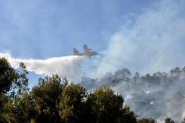 Alarma forestal en Peguera