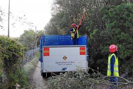 Los ayuntamientos de Mallorca recuperan servicios con la 'flexibilización' del estado de alarma