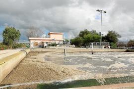 El 30 % del agua residual de Mallorca supera los límites de contaminantes
