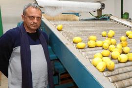 Miquel Gual: «Es hora de que la sociedad y los payeses se reencuentren»