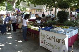 El mercado ecológico cumple cinco años con expectativas de seguir creciendo