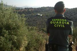 La Guardia Civil interviene en una pelea de gallos en pleno estado de alarma