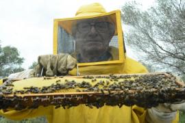 Primera miel de temporada