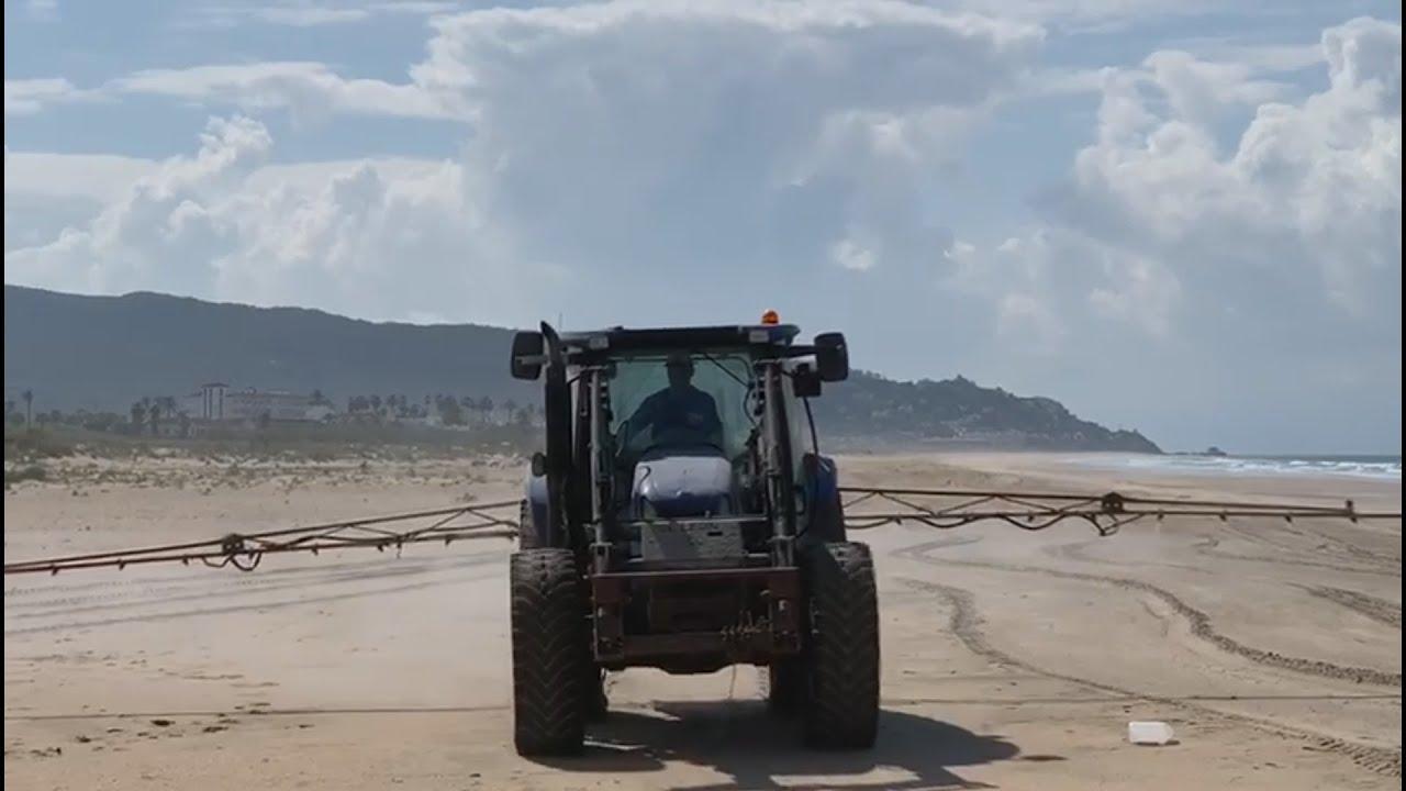 Denuncian la fumigación con lejía de la playa de Zahara de los Atunes (Cádiz)