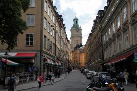 Excrementos de pollo, el 'arma secreta' en Lund (Suecia) para luchar contra la COVID-19