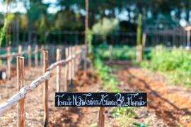 El Gobierno permite desplazarse a los huertos para consumo propio