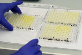 Inician en Alemania el primer ensayo en humanos de una vacuna contra el coronavirus