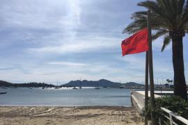 Pollença renuncia a explotar las playas y no sacará a concurso sus servicios