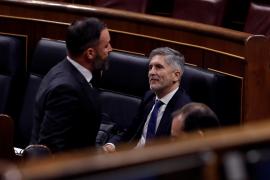 El Constitucional revisará el decreto del estado de alarma