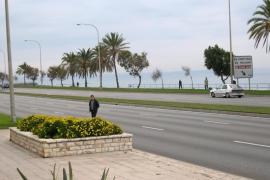 Cort abrirá 14 kilómetros de calles de Palma para los peatones los fines de semana