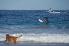 El Gobierno regulará el uso de las playas