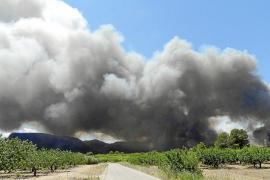 Miles de evacuados en Valencia, donde el fuego ha quemado 50.000 hectáreas