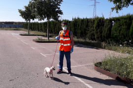 Son Reus retoma el acceso de los voluntarios para atender a los animales