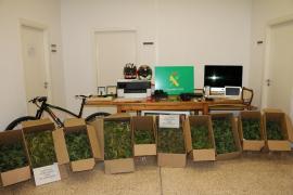 Desmantelado un punto de cultivo y venta de marihuana en Marratxí