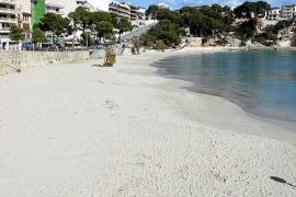 Las playas de Manacor no dispondrán del servicio de hamacas y sombrillas este verano