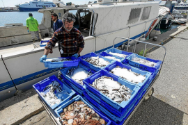 Varias capturas de un pescador.