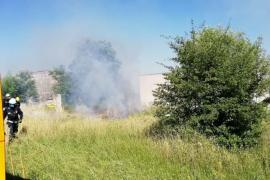 Los bomberos extinguen un pequeño incendio en Selva