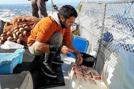 Gregori Mayol, 'Passador': «La pesca turismo supone un ingreso extra para el sector»