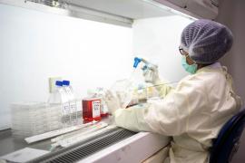 La OMS ve cada vez más improbable una segunda ola importante de coronavirus