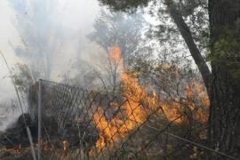 El incendio de Andratx, extinguido tras quemar siete hectáreas de pinar