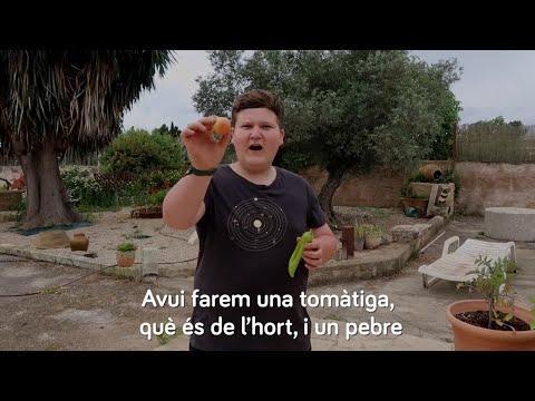 Agricultura recurre a Miquel Montoro para enseñar a plantar a los alumnos de Primaria