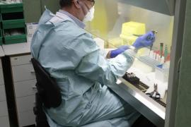 Imagen del laboratorio de microbiología de Son Espases.