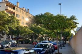 El Ajuntament de Palma adjudica la mejora del alumbrado público de Son Cotoner