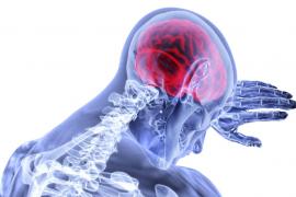 Desarrollan un tratamiento de inmunoterapia prometedor para el tratamiento del cáncer cerebral mortal
