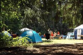 ¿Cómo serán este 2020 los campamentos y las escuelas de verano?