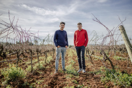 Andreu y Guillem Suñer: «Las viñas no saben de confinamiento, el vino tiene que salir»