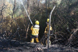 Incendio en una zona de pinar cerca del Hotel Bellevue de Alcúdia