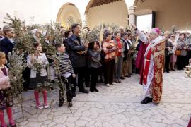 El Domingo de Ramos llena de fieles el Palau Episcopal y la Catedral