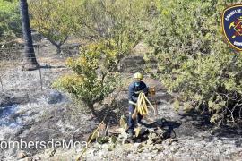 Los Bomberos actúan sobre un incendio agrícola en Sa Pobla, el tercer fuego en un día en el municipio